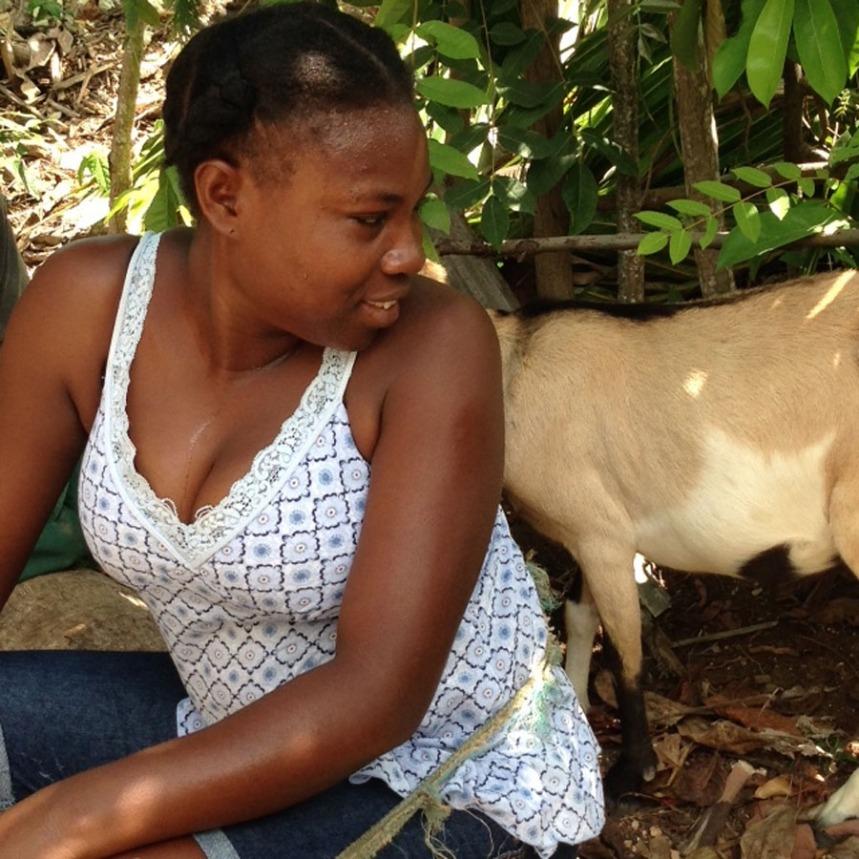 goats 6-pjs